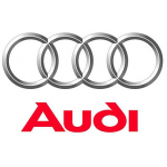 logo Audi NICE