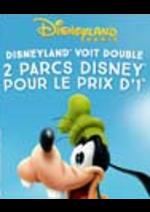 Promos et remises Carrefour Spectacles : 2 parcs Disney pour le prix d'un !