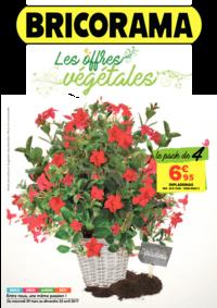Prospectus Bricorama COLOMBES : Les offres végétales
