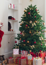 Catalogues et collections stokomani : Arrivage Noël