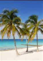 Bons Plans Promovacances : Soleil d'hiver, une sélection dès 239€