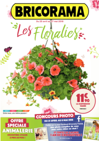 Prospectus Bricorama COLOMBES : Les Floralies