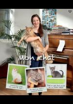 Prospectus AVEVE : Mon chat