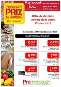 Prospectus Promocash Thonon : Exigence prix semaine 04 Dernière minute !