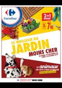 Prospectus Carrefour Créteil : LE MEILLEUR DU JARDIN MOINS CHER