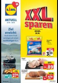 Prospectus Lidl Basel  : Lidl Aktuell
