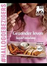 Journaux et magazines Supermarché Delhaize : Folder Delhaize