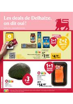 Prospectus Supermarché Delhaize : Folder Delhaize