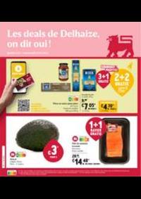 Promos et remises Shop'n Go Gembloux : Folder Delhaize