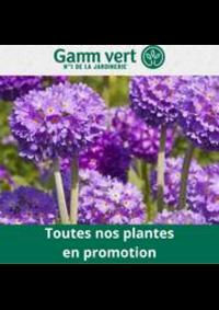 Prospectus Gamm vert : Gamm Vert Promotion